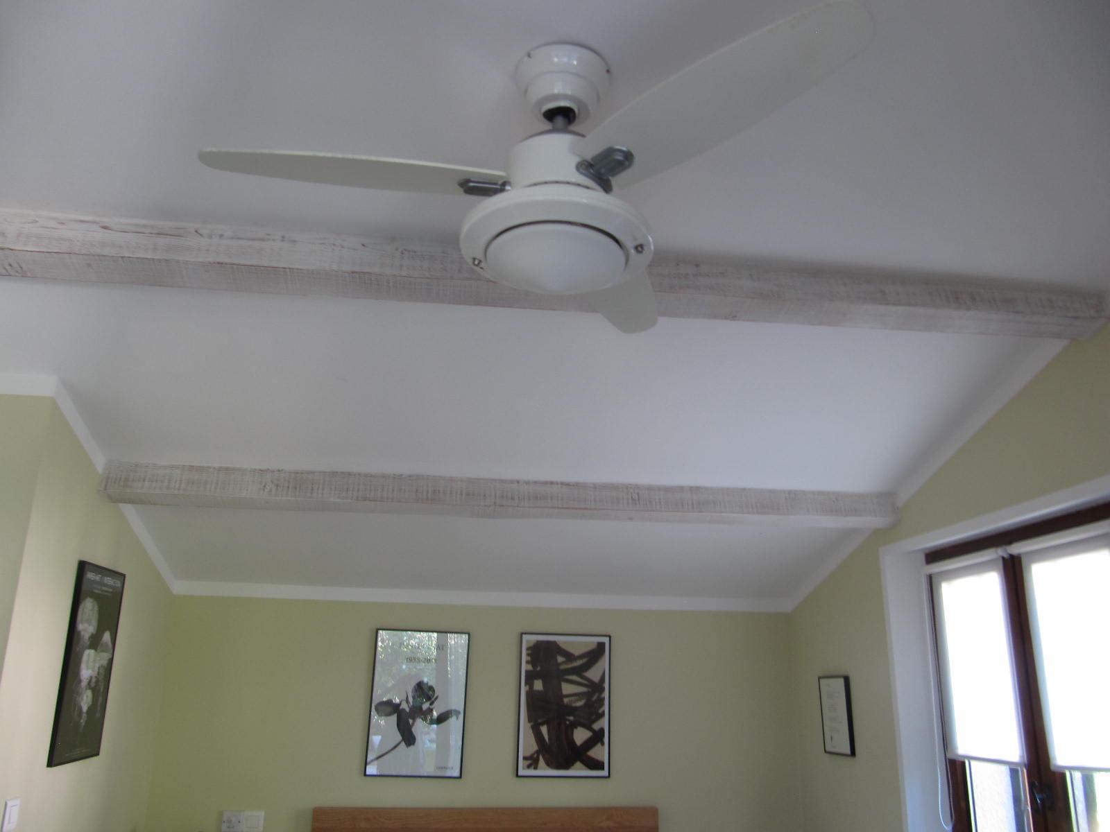 le-ventilateur-de-plafond-20151206-1621301727db27717b-0b41-c93a-5a42-a66aa8fdb1fe96236D26-7448-8DA0-FD49-3CF4171AF360.jpg