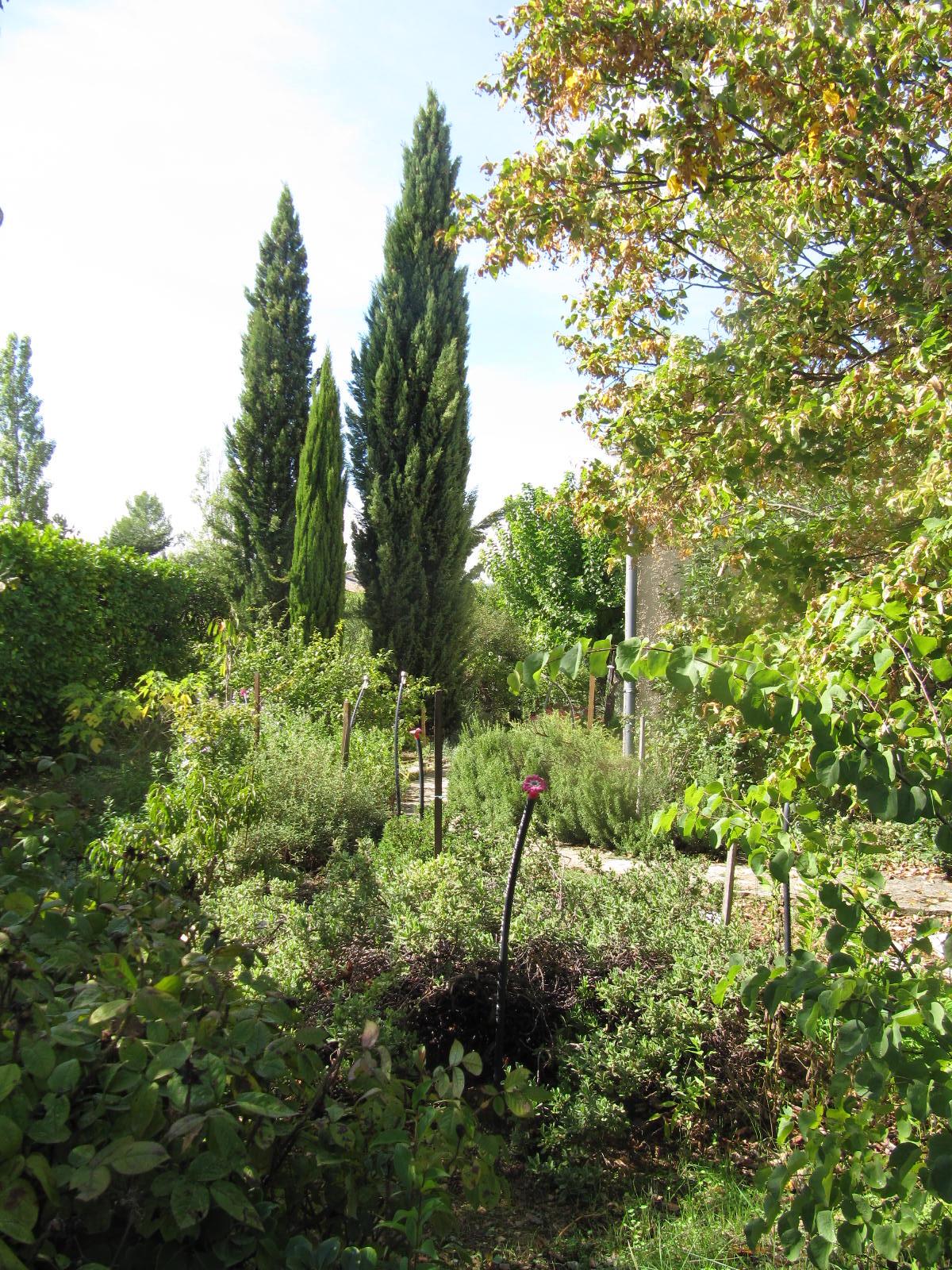 en-cheminant-dans-mon-jardin-vous-irez-de-surprise-en-surprise-il-y-a-meme-des-haltes-pour-rever-4-20151207-1674948247AEBF44A9-0202-4C00-7A08-D75C26F024DF.jpg