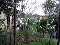 Le jardin attenant à la chambre d'hôtes