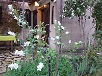 La chambre d'hôtes est de plein pied avec sa terrasse
