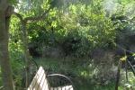 en-cheminant-dans-mon-jardin-vous-irez-de-surprise-en-surprise-il-y-a-meme-des-haltes-pour-rever-2-20151209-1504694046733B294C-5608-C2F3-A830-34A61B552507.jpg