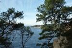 littoral-de-bandol-a-st-cyr112315FAF-5E31-3E36-C0BD-6E6408104EF8.jpg