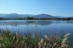 plaine-des-maures-lac-des-escarcets51D13667F-C499-3967-3C00-BBB529E90AC0.jpg